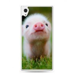Etui na Xperia M4 Aqua świnka