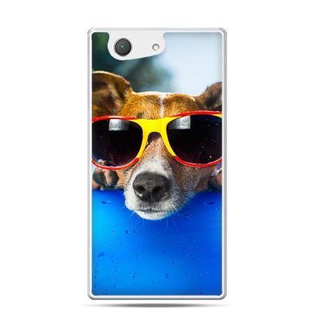 Xperia Z4 compact etui pies w kolorowych okularach