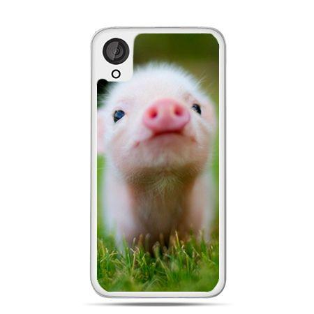 Etui dla Desire 820 świnka