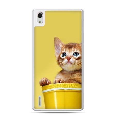 Huawei P7 etui kot w doniczce