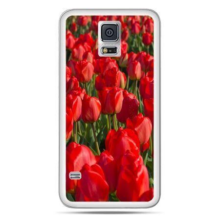 Galaxy S5 Neo etui czerwone tulipany