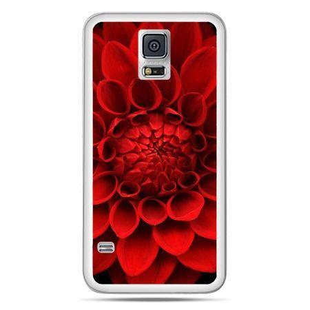Galaxy S5 Neo etui czerwona dalia