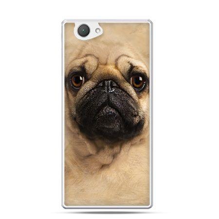 Xperia Z1 compact etui pies szczeniak Face 3d