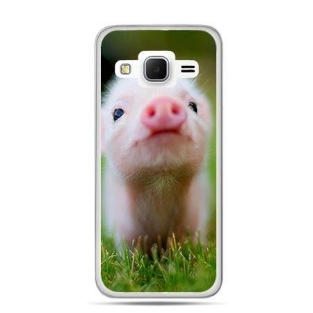 Etui na Galaxy J3 (2016r) świnka