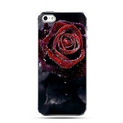 Etui czerwona róża rosy