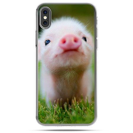 Etui na telefon iPhone XS - wesoła świnka