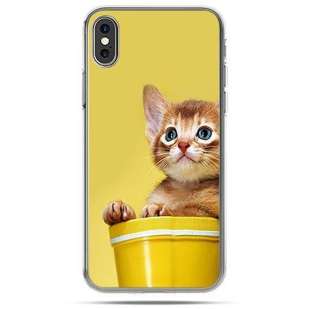 Etui na telefon iPhone XS - kot w doniczce