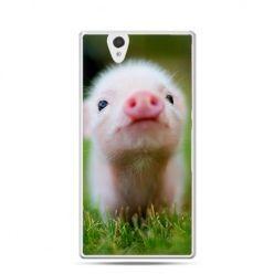 Śmieszna świnka etui z nadrukiem dla  Xperia Z
