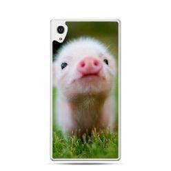 Słodka świnka etui z nadrukiem dla Xperia Z2